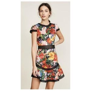 """Alice and Olivia """"Rapunzel Fit And Flare Dress"""""""